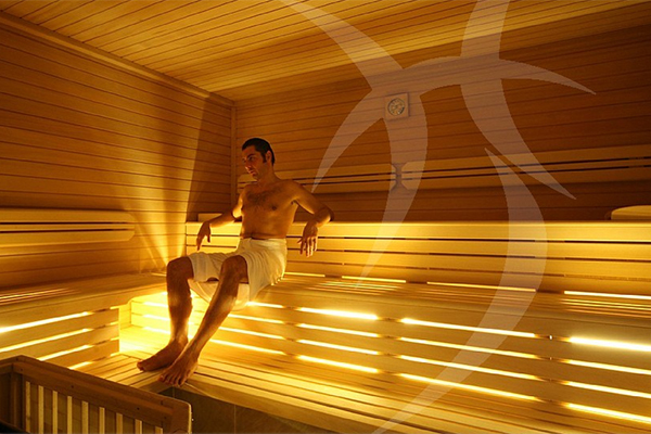 saunas grand public et banya ouest spas la rochelle nantes bordeaux. Black Bedroom Furniture Sets. Home Design Ideas